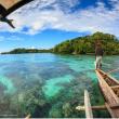 Récifs coralliens: solutions locales pour un problème global