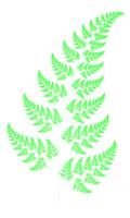 Une fougère fractale modélisée en utilisant un système de fonctions itérées.