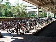 Parking pour vélo à Cambridge (États-Unis)