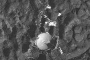 Orthophotgraphie satellitale du Radiotélescope d'Arecibo à Puerto Rico