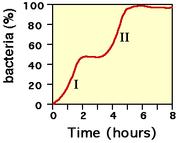 Figure 4: Courbe de croissance dans un milieu contenant deux glucides (par exemple: I: utilisation du glucose et II: utilisation du lactose).