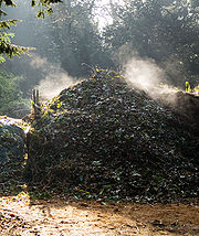 Un tas de compost dégageant de la vapeur un matin froid.