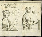 René Descartes associe algèbre et géométrie et démarre l'algèbre linéaire.