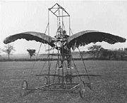 Ornithoptère datant de 1902.