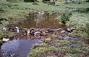 Un barrage fait à la main sur un ruisseau.