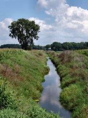 Un ruisseau dans l'Indiana