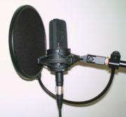 Microphone électrostatique de studio et son filtre anti-pop