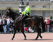 Police montée anglaise