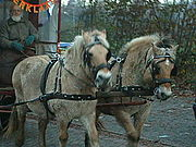 Horses pulling a carriage