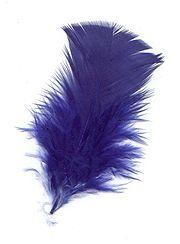 Le bleu est une des couleurs préférées dans le monde occidental