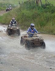 Un groupe de quads