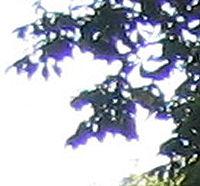 Exemple d'aberration chromatique