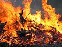 Midsummer bonfire closeup.jpg