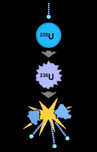 La fission nucléaire de l'uranium.