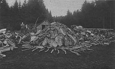 Empilage des morceaux de bois