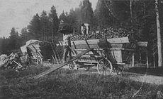 Le chargement du charbon de bois