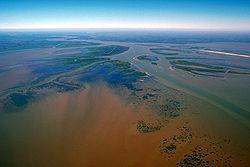 Certains estuaires forment des delta (Delta de l'Atchafalaya, dans le Golfe du Mexique