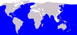 Cetacea range map Blue Whale.PNG