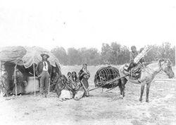 Cheyennes utilisant le travois sur un cheval