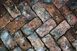 Le sol d'une all�e en briques