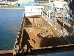 Les deux cales du Velox, déchargeant du colza à Brest.