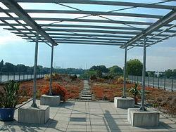 Terrasse d'agrément, avec jardin de sédum et buissons, East Asia Institute à Ludwigshafen (Allemagne)