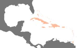 Carte des Antilles (en orange) dans la Caraïbe.