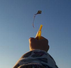 Cerf-volant losangique