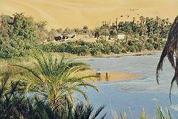 Oasis en Libye (Sahara)