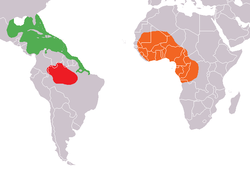 Mapa distribuicao Trichechus.png