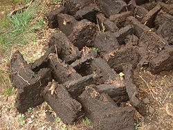 Tranches de tourbe noire mises à sécher pour utilisation comme combustible.