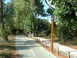 Piste cyclable Fran�aise en
