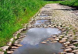 Pavés anciens du nord de la France, près de Lille (Lesquin)
