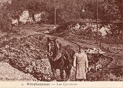 Un chemin de fer Decauville à traction hippomobile dans les carrières de Villetaneuse