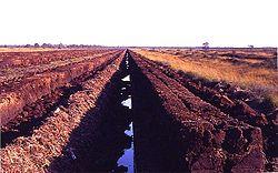 Exploitation en zone de conservation de la nature, en 1987, dans l'