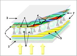 Écran ACL-TN: 1: Plaque de verre; 2 & 3: Polarisants vertical et horizontal; 4: Filtre couleur RVB; 5 & 6: Electrodes horizontales et verticales; 7: Couches polymère d'alignement; 8:Billes d'espacement