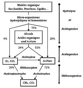 La fermentation méthanique ou méthanisation