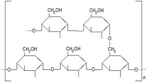 Amylopectine2.png