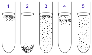 Les bact�ries du type a�robie et ana�robie peuvent �tre identifi�es en effectuant une culture en milieu aqueux:  1: Les bact�ries � a�robie obligatoire se rassemblent au niveau sup�rieur de l'�prouvette pour maximiser l'apport en oxyg�ne. 2: Celles � ana�robie obligatoire se tassent au fond de l'�prouvette pour �viter tout contact avec l'oxyg�ne.  3: Pour celles du type a�robie facultative se rassemblent le plus souvent au bout sup�rieur de l'�prouvette, l� o� la respiration a�robie est la plus favoris�e; mais comme l'absence d'oxyg�ne ne les affectent pas, on peut observer aussi leurs pr�sences tout au long de l'�prouvette.  4: Les bact�ries microa�rophiles se regroupent dans la partie sup�rieure de l'�prouvette, � l'exception de l'extr�mit� car elles n'ont besoin que d'une concentration minime en oxyg�ne pour vivre.  5: Les bact�ries ana�robies a�rotol�rantes se disposent de mani�re homog�ne dans l'�prouvette puisque l'oxyg�ne n'a aucun effet sur eux.
