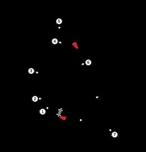 Tracé du circuit à partir de 1954