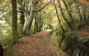 Petit canal construit pour partie en tunnel et pour partie à flanc de colline, pour transporter l'or extrait d'une mine et importer bois, charbon, etc. Il sert aujourd'hui à alimenter une turbine électrique (Tavistock Canal, Lumburn Valley).