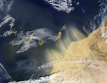 Transports de poussières/aérosols jusqu'au Canaries à partir du Sahara (Image Terra/MODIS 17.02.2004).
