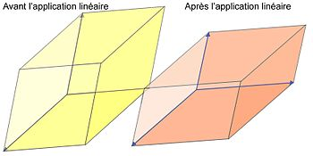 Fig. 1. Modification par un endomorphisme diagonalisable d'un parallélotope dont les côtés sont formés par une base de vecteurs propres.