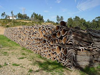 Écorces de chêne-liège (Portugal)