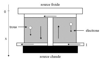 Module de réfrigération thermoélectrique