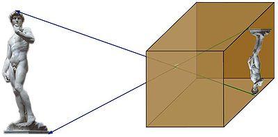Fig. 1. Cette application linéaire déforme la statue de David. Les vecteurs bleus ont pour images les vecteurs verts. Ils gardent la même direction, ce sont des vecteurs propres. La valeur propre associée est proche de -1/2. Dans ce cas particulier l'espace propre est l'espace entier.