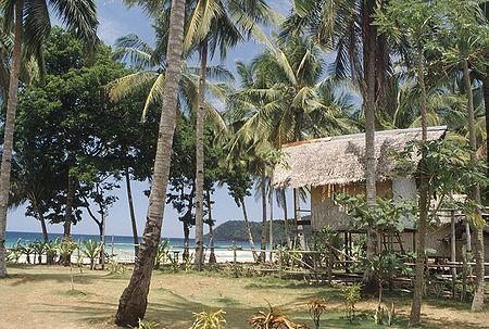 Habitation tropicale