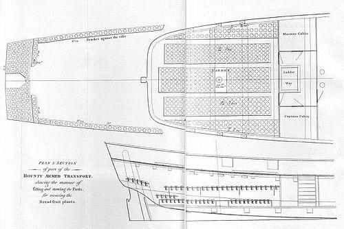 Section en coupe de la Bounty d'après une relation de William Bligh