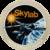 Skylab Patch.png
