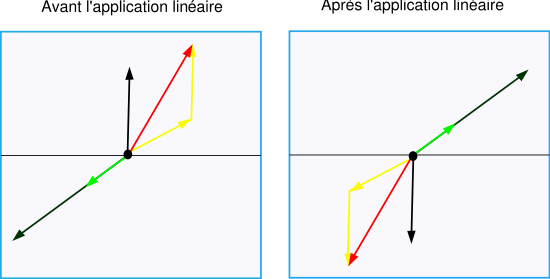 Fig. 2. Exemple d'application linéaire: une symétrie par rapport à l'axe horizontal central